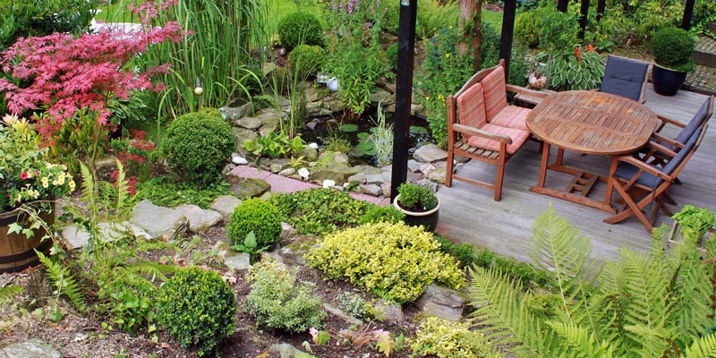 Sustainable landscape design with terrace and dense foliage