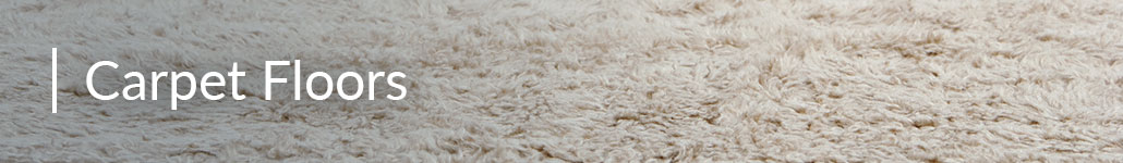 Carpet Flooring in a Banner Photo.