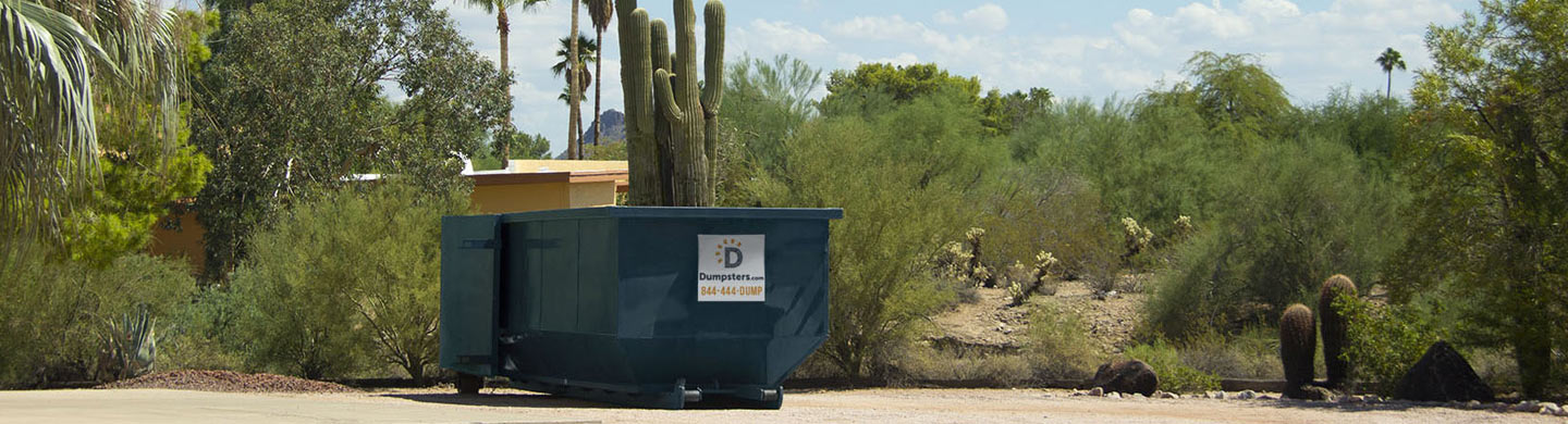 A Roll Off Dumpster in a Parking Lot next to Cacti and Bushes.