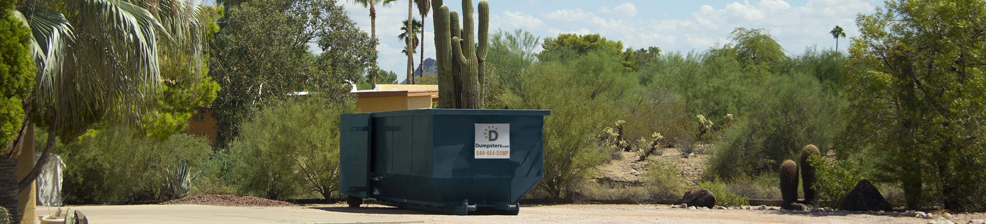 Dumpster in Desert Surrounded by Cacti.