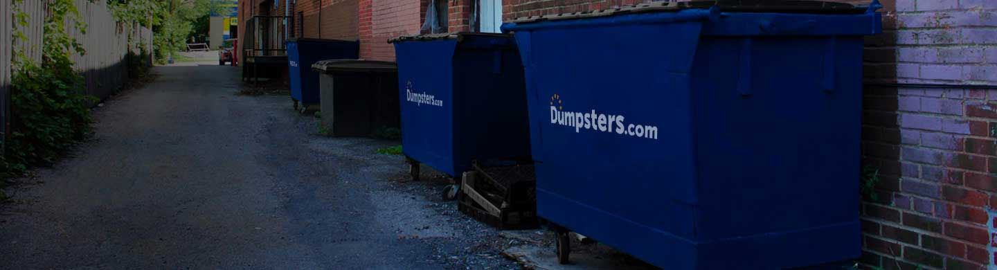 long-term dumpster rentals sitting in a back alley