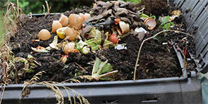 compost bin filled with dirt and food waste.