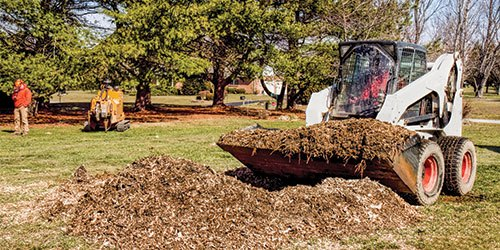 A Vehicle Removing Yard Waste