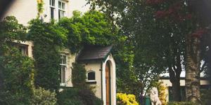 Upscale Neighborhood With Green Plants and Trees.