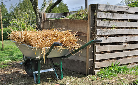 Wheel Barrow Full of Brush Next to Compost Pile.